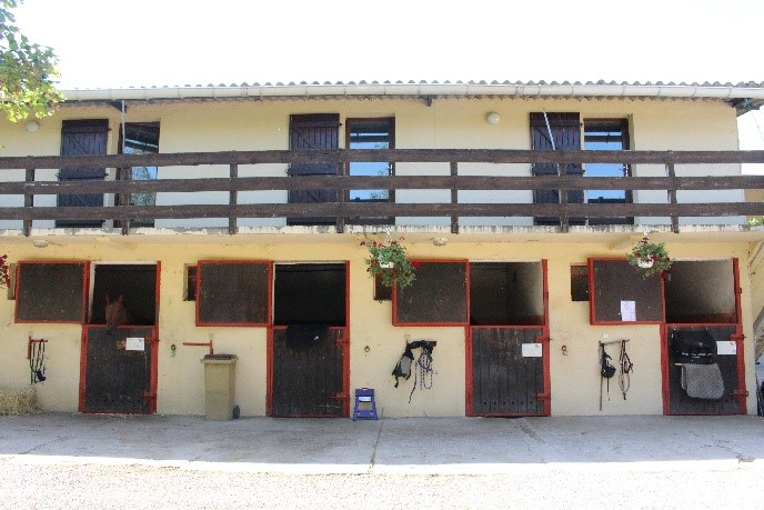 pension-cheval-chevaux- luneville-nancy-54